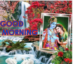 God Radha Krishna Good Morning Wallpaper Pics Download