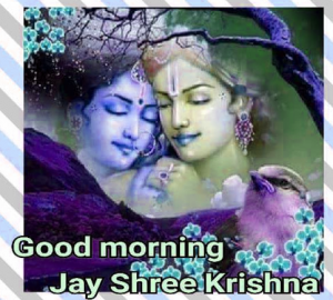 God Radha Krishna Good Morning  Photo Download