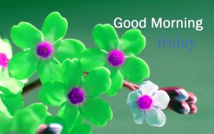 Friday Good Morning Images Photo Wallpaper Pics Dow load