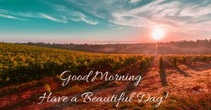Friday Good Morning Images Photo Wallpaper HD Download