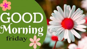 Friday Good Morning Images Photo Wallpaper Pics Download