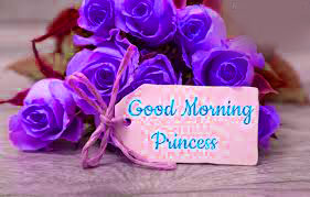 Good Morning Princess Images Photo HD Download