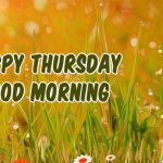 65+Thursday Good Morning Images Wallpaper