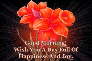 Joyful Good Morning Wishes Images Photo Pictures Download
