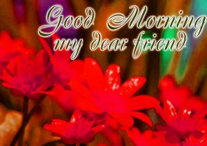 Good Morning Wishes Images Photo Pictures For Dear Friends