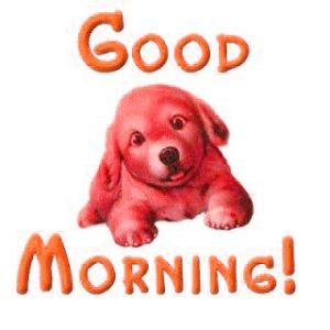 Puppy Lover good morning Images Wallpaper Photo HD Download
