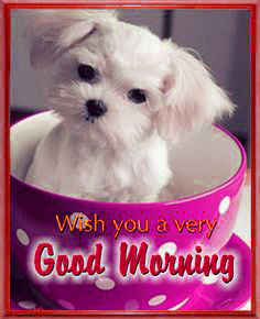 Puppy Lover good morning Images Pictures Photo Download