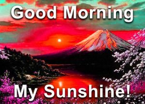 Good Morning Sunshine Images Photo HD Download
