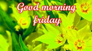 Friday Good Morning Images Photo Pics