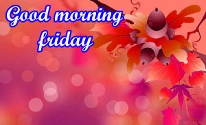 Friday Good Morning Images Pics HD