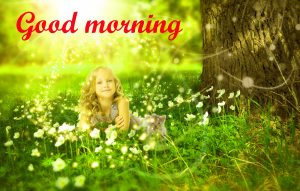 Good Morning Sunshine Images Photo Pics Download