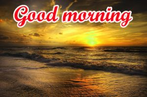Today is a New Day good morning Images Pics HD