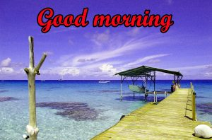 Today is a New Day good morning Images Photo Pics HD