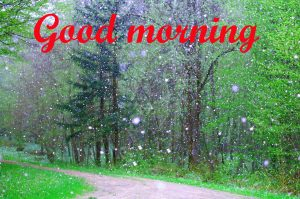 Rainy Day Good Morning Images Pics HD
