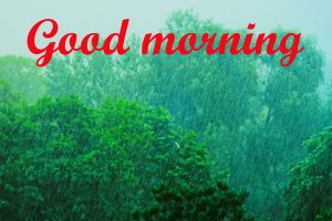 Rainy Day Good Morning Images Pictures HD Download
