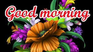 Special gd gud mrng Images