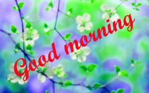 Spring Good Morning Images Pics HD Download