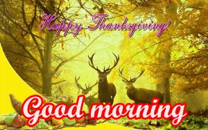 Thanksgiving Good Morning Images Wallpaper Download