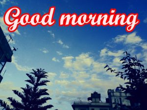 Tuesday Good Morning Images Photo