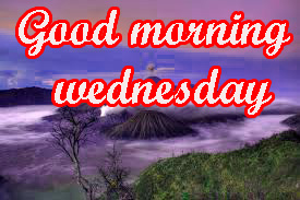 Wednesday Good Morning Images Pictures Download