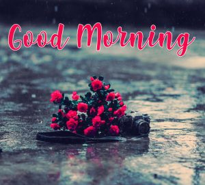 Best Rainy Day Good Morning Images Photo Wallpaper Free HD Download