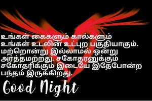 Best Tamil Good Night Images Photo Wallpaper Pictures Free HD Download