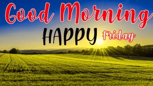 Friday Good Morning Images Pictures Photo Wallpaper Free Download