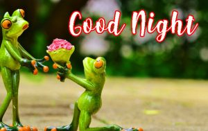 Funny Good Night images Pictures Photo Wallpaper Free Download