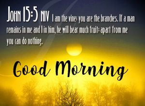 Good Morning Bible Quotes Images Pictures Photo Wallpaper Free HD Download