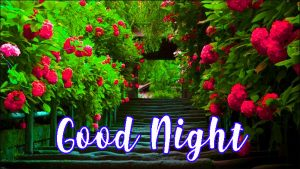 Good Night Honey Sweet Dreams Images Photo Wallpaper Pictures Free HD