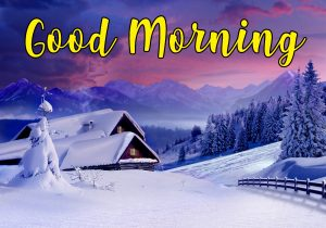 Winter Good morning Images Photo Wallpaper Pictures Free HD