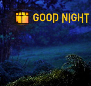 Beautiful Good Night Images pictures photo hd