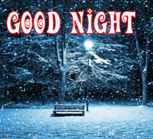 Beautiful Winter Good Night Images wallpaper pictures hd download