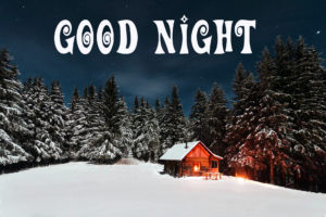 Beautiful Winter Good Night Images pictures pics download