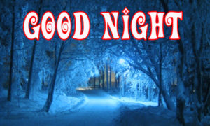 Beautiful Winter Good Night Images wallpaper photo download