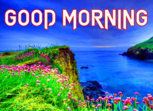 Good Morning Images pics photo hd