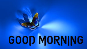 Butterfly Good Morning Images wallpaper pictures hd download