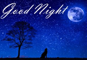 New Beautiful Good Night Images Wallpaper Download