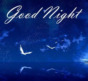 New Beautiful Good Night Images Wallpaper Pictures Free HD