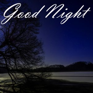 New Beautiful Good Night Images Photo Pictures Free HD