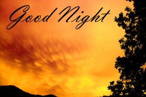 New Beautiful Good Night Images Wallpaper Pics HD Download