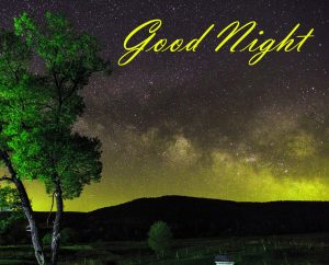 New Beautiful Good Night Images Wallpaper Pics Pictures HD For Whatsapp
