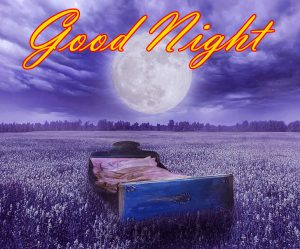 New Beautiful Good Night Images Photo Pictures HD