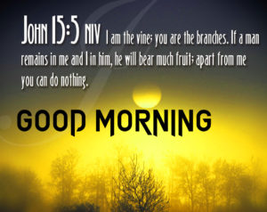 Good Morning Bible Quotes Images photo wallpaper hd
