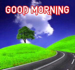 Gud Morning Images pictures photo hd