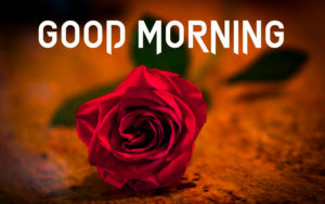 Gud Morning Images wallpaper pictures for facebook