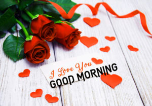 Good Morning I love you Images photo wallpaper free hd