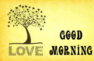Post Card Good Morning Images photo pics download