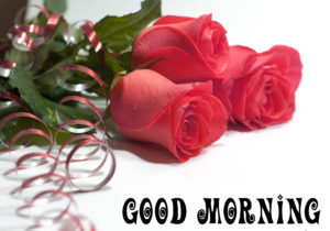Post Card Good Morning Images photo wallpaper free download