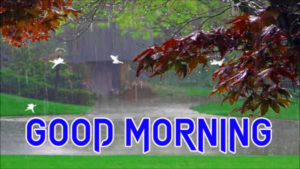 Rainy Day Good Morning Images wallpaper pics free hd